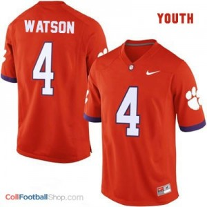 Deshaun Watson Clemson Tigers #4 Football Jersey - Orange - Youth