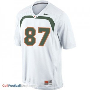 Reggie Wayne Miami Hurricanes #87 Football Jersey - White