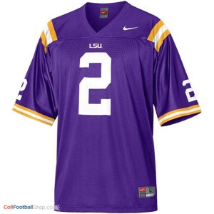 Rueben Randle LSU Tigers #2 Mesh Football Jersey - Purple
