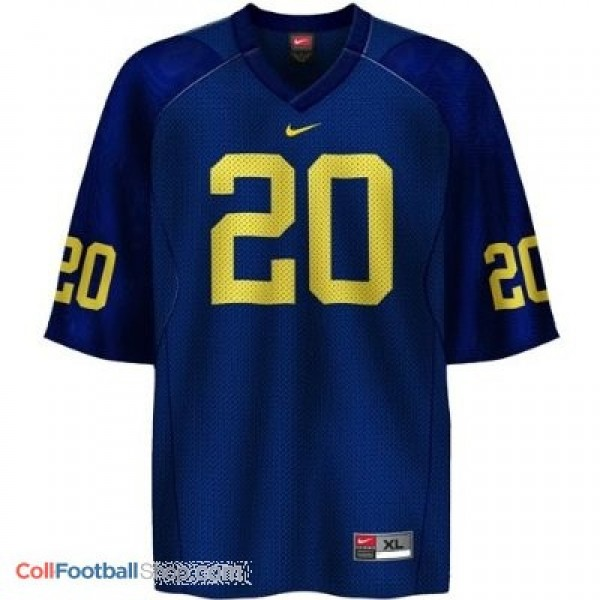 online retailer f9a7a 4573c Mike Hart Michigan Wolverines #20 Youth Football Jersey - Navy Blue